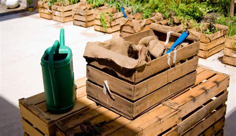 come fare l orto sul terrazzo come fare un orto in cassetta fai da te per terrazzo o