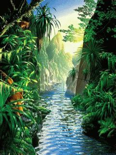 Animated Jungle Wallpaper - green jungle animated nature wallpaper