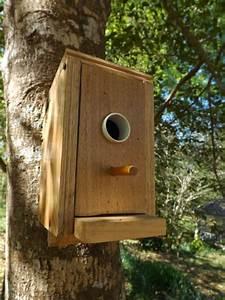 Vogelhaus Aus Holz Selber Bauen : vogelhaus selber bauen leisten sie einen beitrag zum wildleben ~ Markanthonyermac.com Haus und Dekorationen