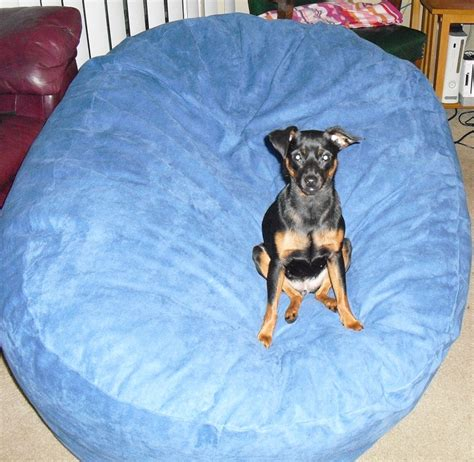 bean bag chair outlet king beany xl royal sack review
