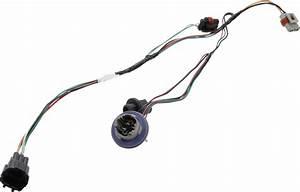 Nissan Titan Headlight Wiring Harness  System  Headlamp