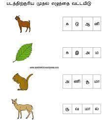 tamil worksheets images worksheets st grade