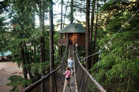 Swinging Bridge And View Of Pleasantree At Out N About
