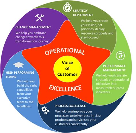 operational excellence genetrix consulting
