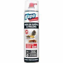 Bombe Insecticide Spéciale Pour Nids De Guêpes Et Frelons : insecticide longue port e gu pes et frelons kapo ~ Melissatoandfro.com Idées de Décoration