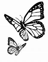 Butterfly Coloring Pages Butterflies Colouring Printable Flitting Monarch sketch template