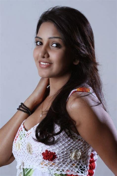 actress hd gallery pavani reddy  saree photo gallery