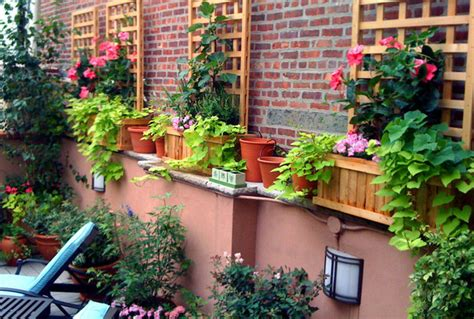 Large Terra Cotta Planters by Village Terrace Design Roof Garden Planter Boxes Vines