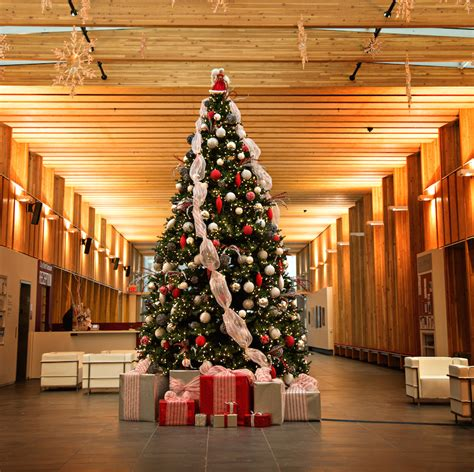 collection of rent christmas decorations best christmas