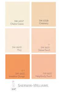 best paint for home interior how to work with salmon paint shades such as apricot
