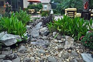 Waterfall Stream with Dry Creek - Tropical - Landscape