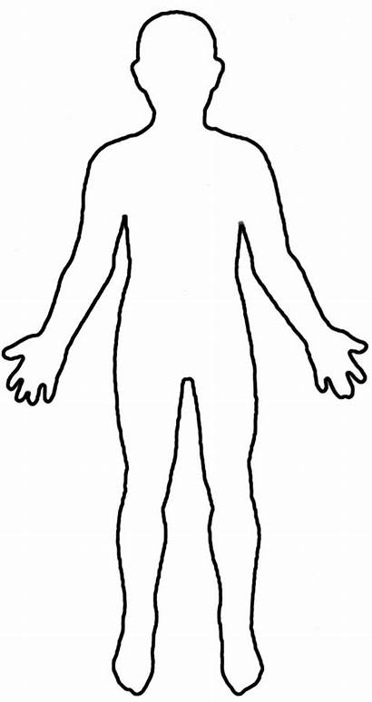 Outline Human Printable Clipart Person Upper Autopsy