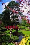Irish National Stud - Japanese Gardens japanese gardens kildare ireland