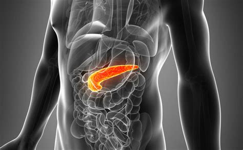 pancreatic cancer bacteria  play  role