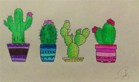 where to buy succulent cactus drawings by schondarkness on deviantart