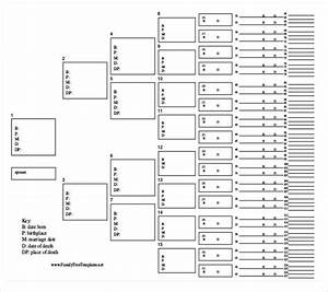 Fill In The Blank Family Tree Template
