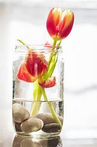 Frühlingsdeko Im Glas : kreative fr hlingsdeko ideen blog ~ Orissabook.com Haus und Dekorationen