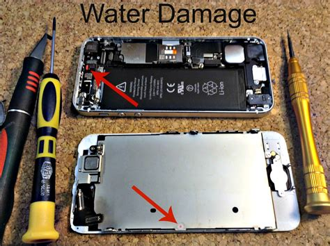 how to fix water damaged iphone 6 iphone ipod repair newton ma miphone doctor of boston