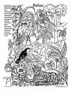 Dschungel Dschungel Pinterest Dschungel Ausmalen Und Wimmelbild