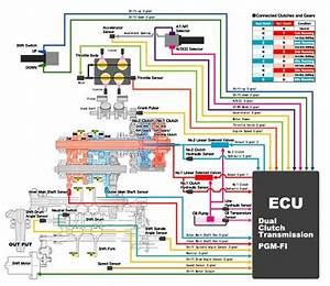 Honda Nm4 Wiring Diagram