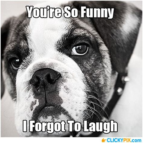 You Re Funny Meme - you re not funny serious face meme funny pinterest meme and face