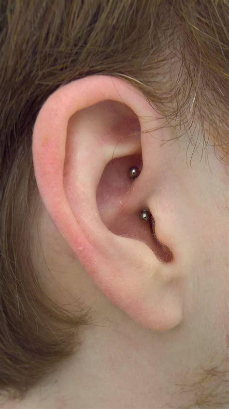 Discreet daith, my first piercing. : piercing