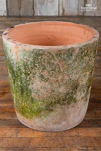 Large, Aged, Terracotta, Pots, With, Moss, Patina