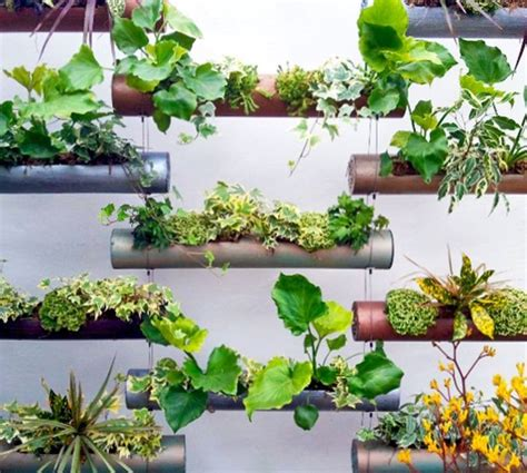 pvc pipe ideas amazing type garden