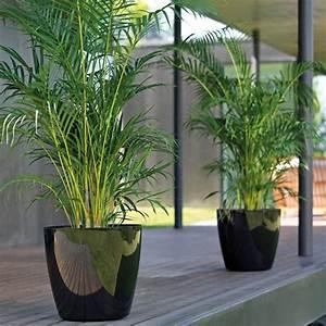 Pot Pour Plante : pot plante exterieur ~ Teatrodelosmanantiales.com Idées de Décoration