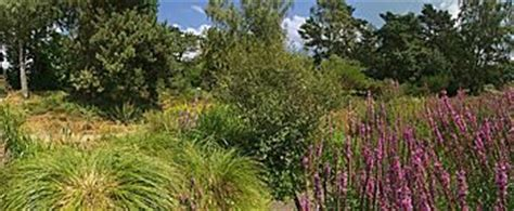 Botanischer Garten Trier by Botanic Garden Frankfurt Germany Panoramas