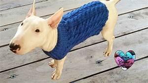 Video Pour Chien : pull pour chien torsade tricot jersey de perro dos agujas con trenzas youtube ~ Medecine-chirurgie-esthetiques.com Avis de Voitures