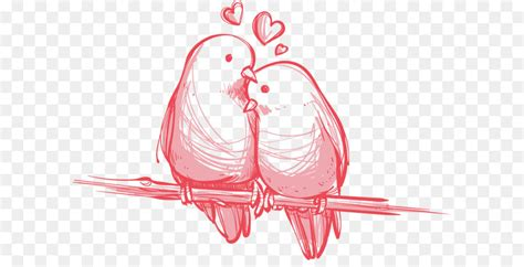 bird valentines day wedding gift wallpaper vector love birds hand painted png