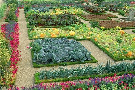 easy vegetable backyard concepts  residence house