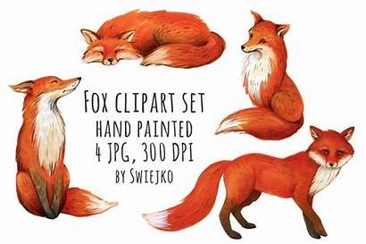 Fox Watercolor Illustration Clipart Forest Swiejko Animals