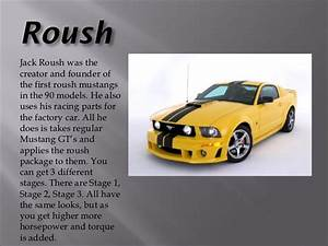 Different Types Of Mustangs