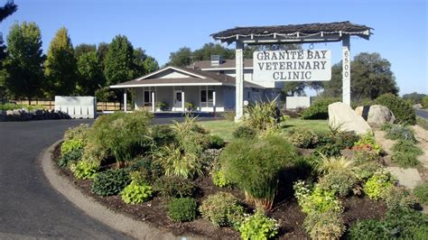 granite bay veterinary clinic bradley dvm cvma