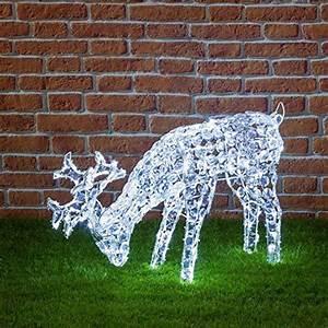 Weihnachtsbeleuchtung Aussen Figuren : grasendes tier 200 kaltwei e leds h he 50 cm weihnachtsfiguren 3d led figuren ~ Buech-reservation.com Haus und Dekorationen