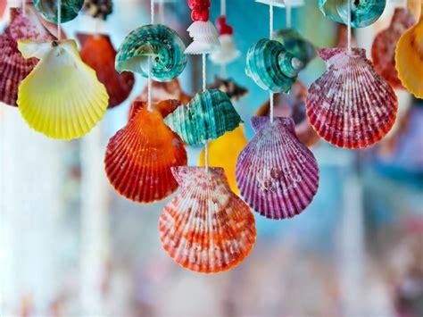 ideas  decorar  conchas marinas  caracoles mi