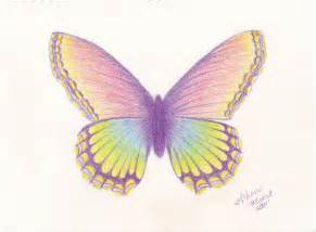 Colored Pencil Butterfly Drawings