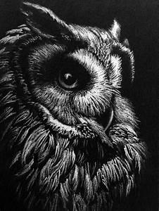 Planisphère Noir Et Blanc : 1001 photos de dessin noir et blanc qui vont vous aider am liorer votre technique ~ Melissatoandfro.com Idées de Décoration
