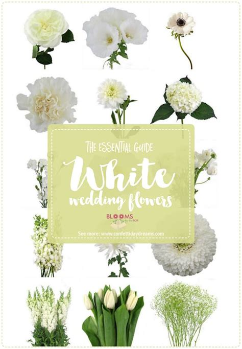 white wedding flowers featured  confetti day dreams