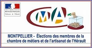 actualites montpellier elections des membres de la With chambre de metiers et de l artisanat