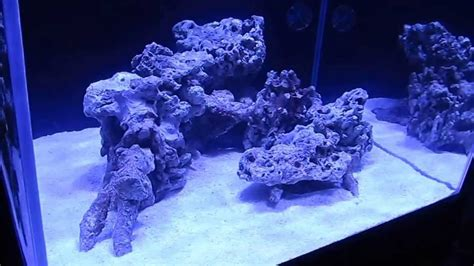Reef Aquarium Aquascaping by My New Cube Reef Aquascaping 2013