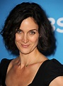 Carrie Anne Moss HD Pictures | Full HD Pictures