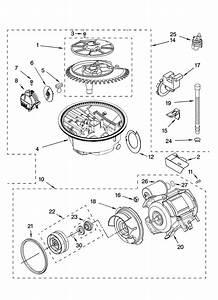 Garbage Disposal Parts Diagram  U2014 Untpikapps