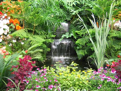 small tropical plants garden wall with small waterfall natural building blog