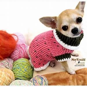 Handmade Hand knit crochet Dog Puppy Maltese Shih Tzu Vest ...