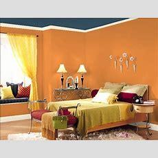 House Paint Color Ideas,  House Designs