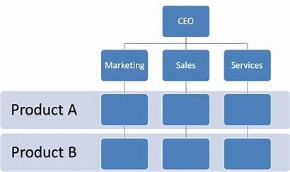 Organizational Structures Matrix Unified Divisional Compliance Framework