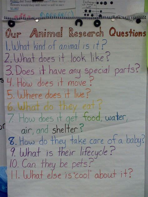 animal research questions    questions